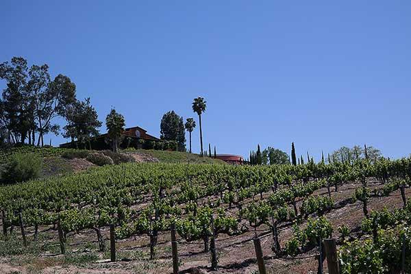 Falkner Winery Temecula