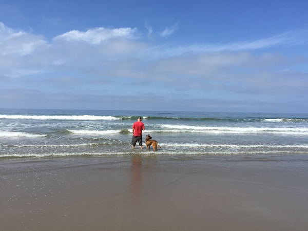 Rincon Parkway Beach Dog Friendly