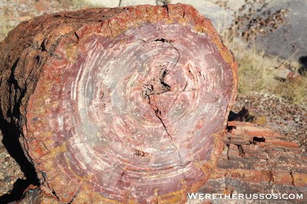 Petrified Forest National Park crystalized quartz