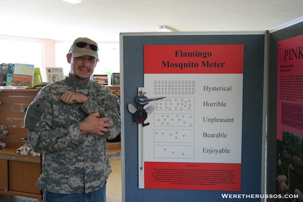 Flamingo Visitor Center Everglades Mosquito Meter