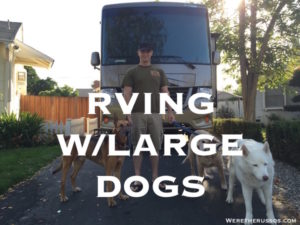 RVing with Large Dogs